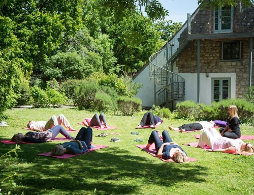 Summer Sangha – Meditation & Mindfulness Classes